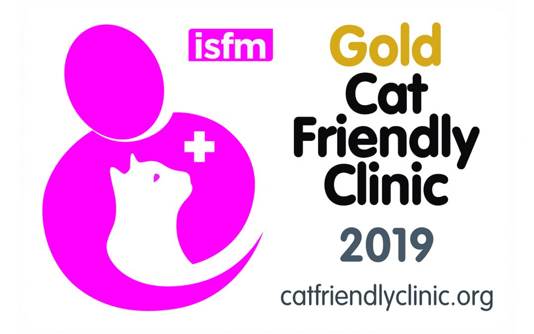 gold-cat-friendly-clinic-melbourne